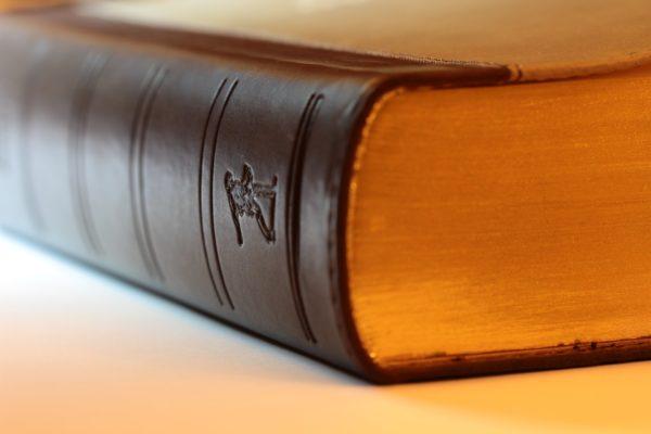 Dział prawa cywilnego i postępowania sądowego